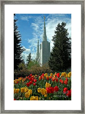 A Temple To Our God Framed Print by Nick  Boren