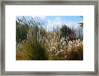 A Thanksgiving Kind Of Day Framed Print