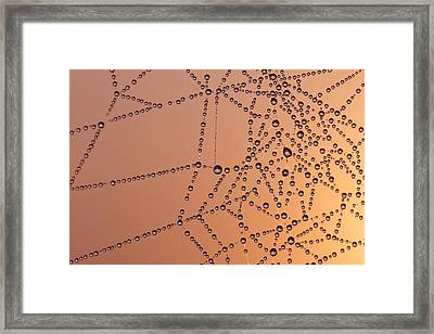A Thousand Dawns Framed Print by Roeselien Raimond