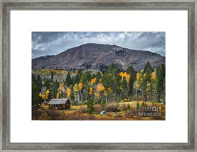A Time To Remember Framed Print