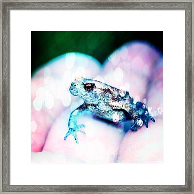 A Tiny Frog Framed Print by Tommytechno Sweden