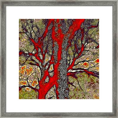 A Touch Of Autumn Abstract Iv Framed Print