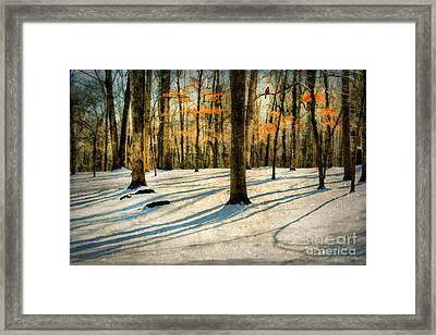A Touch Of Autumn Framed Print by Darren Fisher