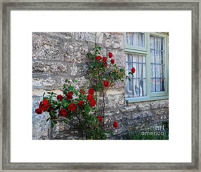 A Touch Of Colour Framed Print