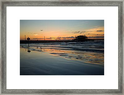 Framed Print featuring the photograph A Touch Of Gold by Sharon Jones