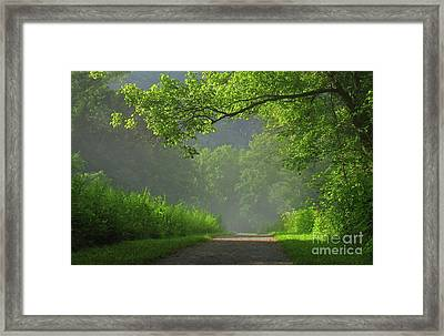 A Touch Of Green II Framed Print by Douglas Stucky