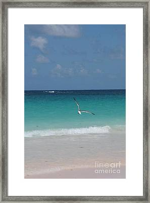 A Touch Of Heaven Framed Print