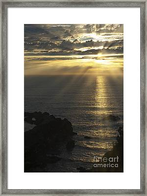 A Touch Of Heaven Framed Print by Sandra Bronstein