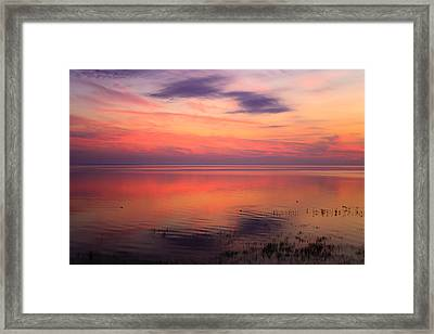 A Touch Of Morning Framed Print