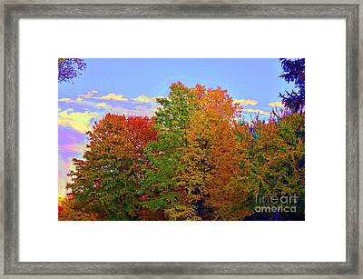A Touch Of Neon Framed Print by Judy Wolinsky