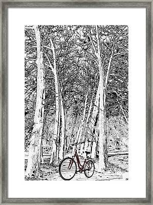 A Touch Of Red Framed Print by Liane Wright