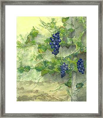 A Touch Of Tuscany Framed Print