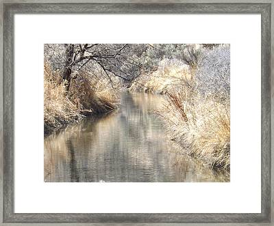 A Tranquil Setting Framed Print