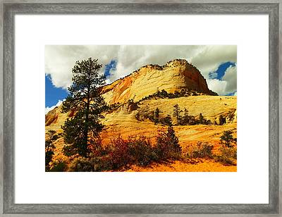 A Tree And Orange Hill Framed Print by Jeff Swan