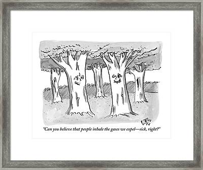 A Tree In A Forest Addresses Another Tree Framed Print