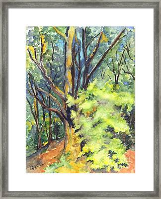 A Tree In Dunkeld Scotland Framed Print by Carol Wisniewski