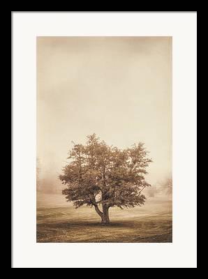 Analog Photographs Framed Prints