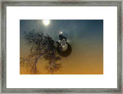 A Tree In The Sky Framed Print