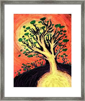 A Tree Is Born Framed Print by David Condry