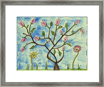 A Tree Making Fruit  Framed Print by Cathy Peterson