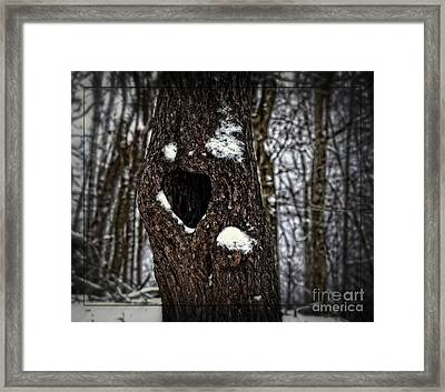 Framed Print featuring the photograph A Tree With Heart by Brenda Bostic