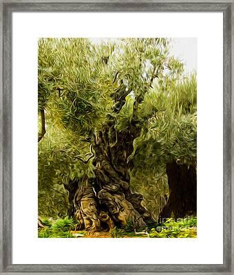 A Treesome Framed Print