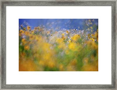 A Tribute To Monet Framed Print