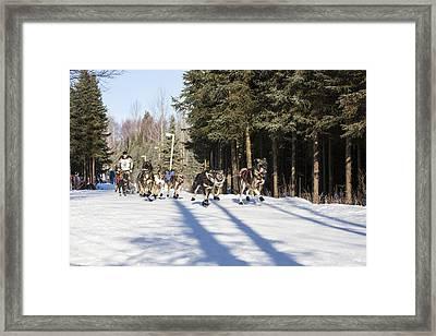 A Trot Through Anchorage Framed Print