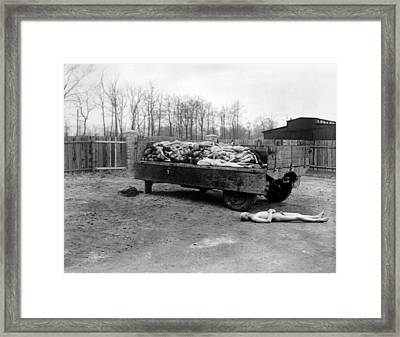A Truck Load Of Bodies Of Dead Framed Print