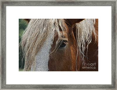 A Trusted Friend Framed Print