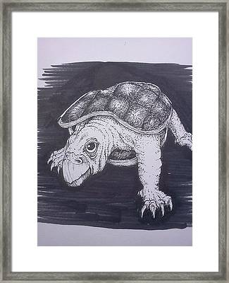 A Turtle Named Puppy Framed Print by Richie Montgomery