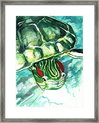 A Turtle Who Likes To Eat Fish Framed Print by Rene Capone