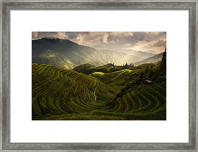 A Tuscan Feel In China Framed Print by Max Witjes