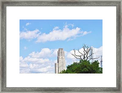 A Unique Perspective Framed Print