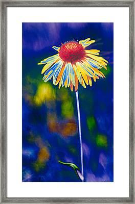 A Very Wild Flower Framed Print