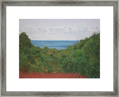 A View For Hannah Framed Print by Harvey Rogosin