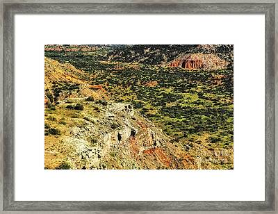A View From Above Framed Print by Nancy Marie Ricketts
