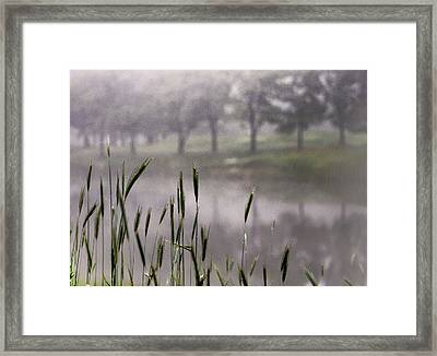 Framed Print featuring the photograph A View In The Mist by Bruce Patrick Smith