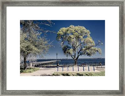 A View Of Lake Minneola Framed Print