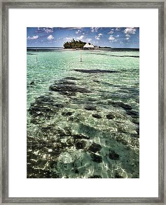 A View Of Thatch Island Framed Print by Amy Manley