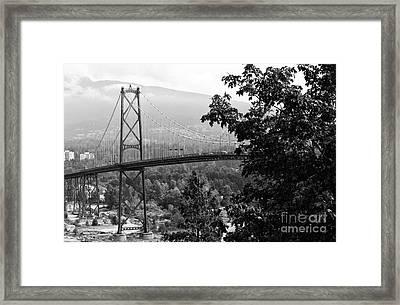 A View Of The Lions Gate Bridge Mono Framed Print by John Rizzuto
