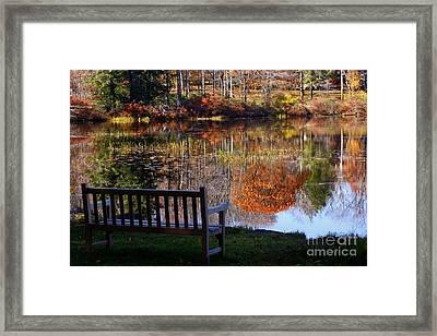 A View Of Wonder Framed Print
