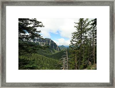 A Vista - Mt. Rainier National Park Framed Print