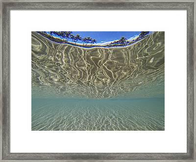 A Vivid Dream Framed Print by Brad Scott