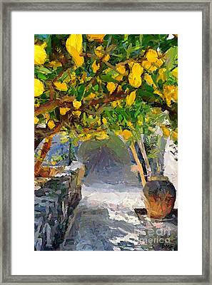A Voult Of Lemons Framed Print