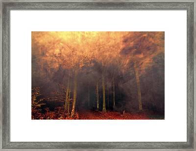 A Waking Dream. Framed Print