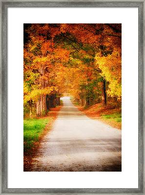 A Walk Along The Golden Path Framed Print by Jeff Folger