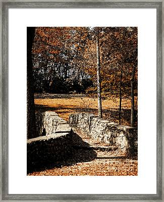 A Walk Along The Old Stone Path Framed Print