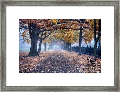 A Walk In Salem Fog Framed Print