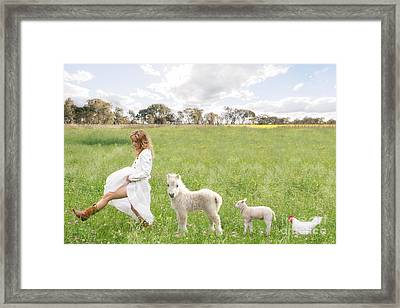 A Walk In The Country Framed Print